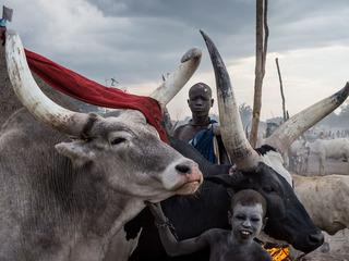 """Алессандро Рота (Италия) """"Южный Судан: от войны к жизни"""""""
