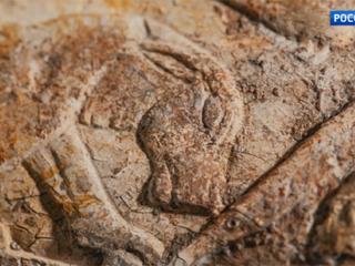 Пушкинский музей решил собрать деньги на покупку магического древнеегипетского жезла