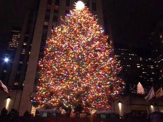 В Нью-Йорке зажгли огни на главной рождественской ёлке города