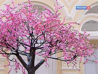 Юбилейный фестиваль искусств «Черешневый лес» пройдет в прямом эфире на Первом канале
