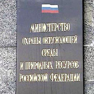 В Минприроды предложили дополнить Лесной кодекс РФ