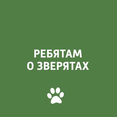 Ребятам о зверятах