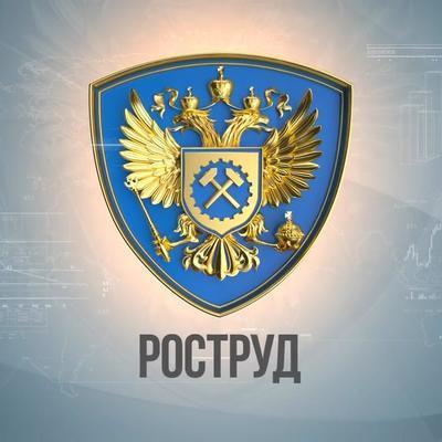 Роструд начал проверку в золотодобывающей артели Красноярска, где погибли люди