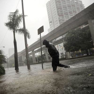 Около 4 млн домов остаются без света во Флориде