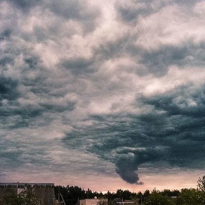 Во время смерча в Новгородской области сила ветра достигала 30 м/с