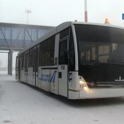 Золотые слитки выпали из самолета в Якутске из-за неправильного крепления и повреждённого люка