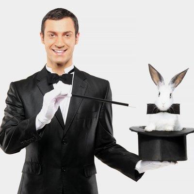 Британский фокусник через 28 лет работы узнал, что страдает от аллергии на кроликов