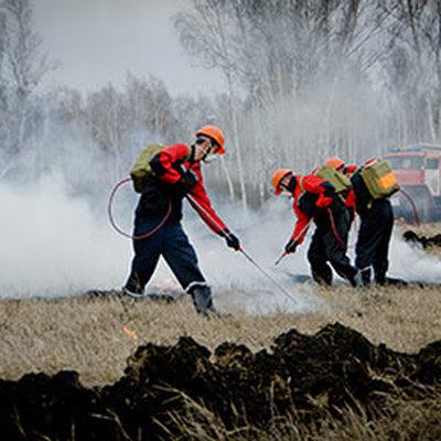 Природными пожарами в России охвачено почти 27 тысяч гектаров