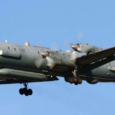 Минобороны опубликует детальную информацию о катастрофе Ил-20 в Сирии