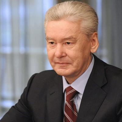 Собянин: голосование по поправкам в Конституцию проходило в сложный период