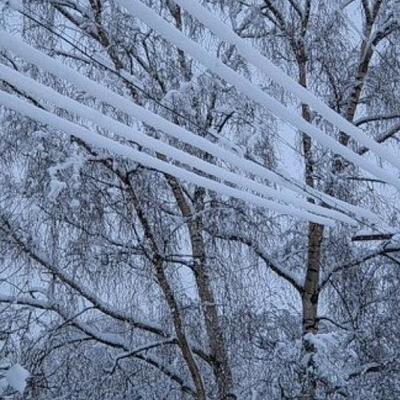 На некоторые регионы России обрушились снегопады
