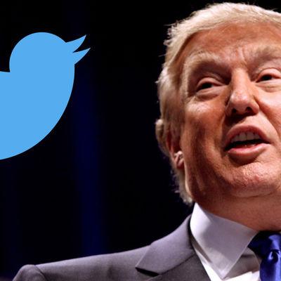 Трамп назвал двойными стандартами обвинительное решение суда политтехнологу Стоуну