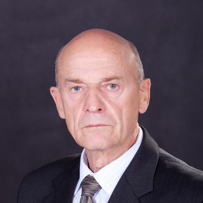 Владимир Оттович Дайнес