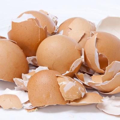 Автомобильные запчасти можно делать из яичной скорлупы