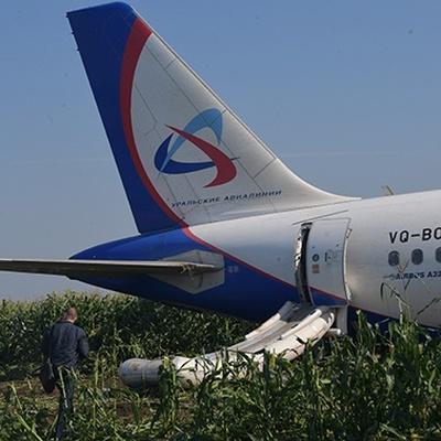 СК опроверг информацию о фактах мародерства на месте аварийной посадки самолета