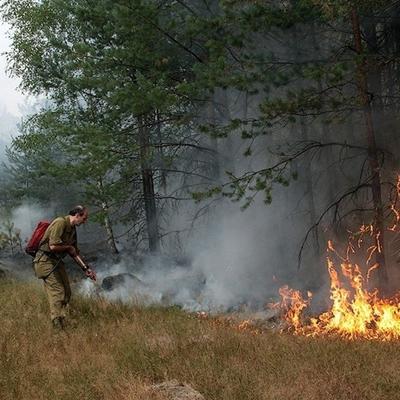 Почти 30 возгораний сухой травы произошло в Алтайском крае за минувшие сутки