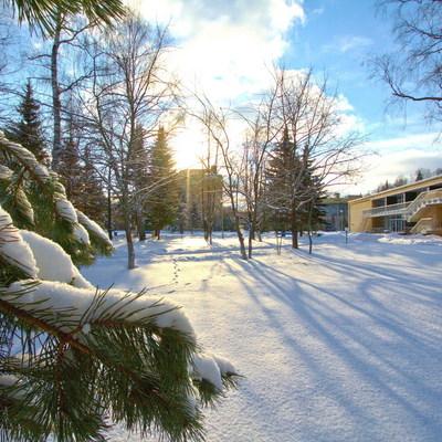 Москвичи на новогодние праздники выбирают пансионаты Подмосковья