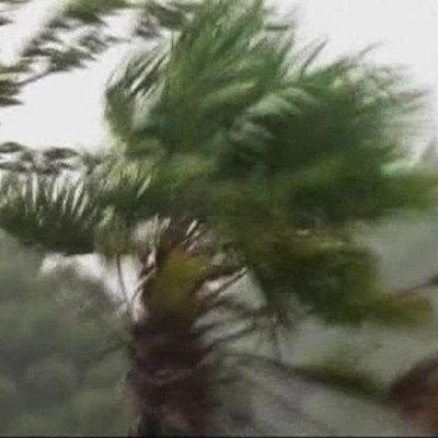 Со стороны Тихого океана к Японии приближается тайфун