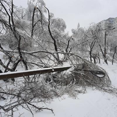 В Приморье продолжаются восстановительные работы после ледяного дождя