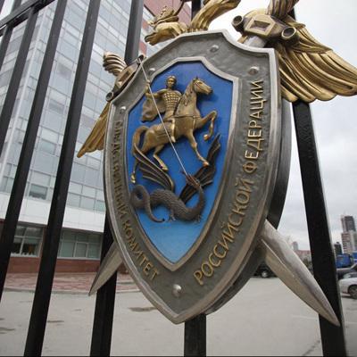 СКР расследует 21 уголовное дело в связи с несогласованными митингами 23 января