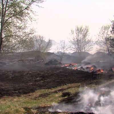 В Тюменской области ликвидировали лесной пожар площадью 44 тыс. га