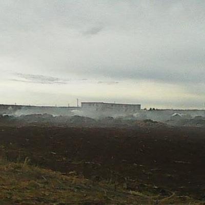 Школьницы сожгли ферму в Пермском крае ради ролика для TikTok