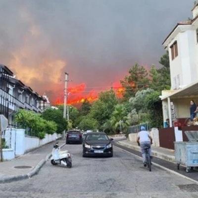 Турецкие власти сообщают о четырёх жертвах природных пожаров