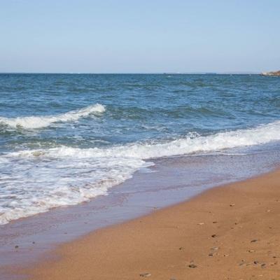 Спрос на отдых в Крыму во время нерабочих дней остается на уровне октября