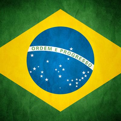 Бразильцы регистрируют животных у нотариуса, чтобы сохранить опеку при расторжении брака