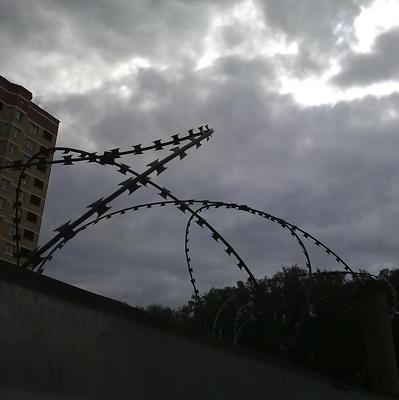 Российский волонтер Елена Одновол освобождена из СИЗО