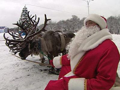 Дед Мороз зажег первую новогоднюю елку России