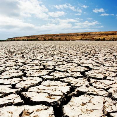 Режим чрезвычайной ситуации введен в Астраханской области из-за засухи