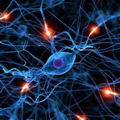 Ученые рассказали, где скрываются навязчивые мысли