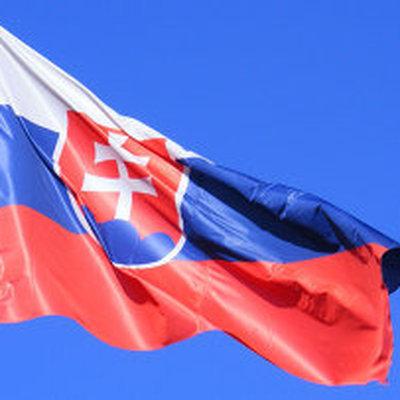 В Словакии водитель переполненного автобуса скончался во время рейса