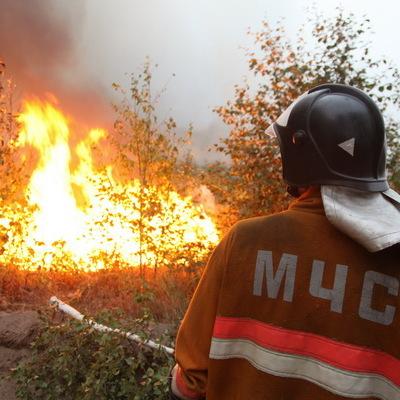 Пожар в пригороде Ростова-на-Дону ликвидирован