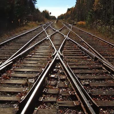 В Германии высокоскоростной поезд столкнулся с кабанами