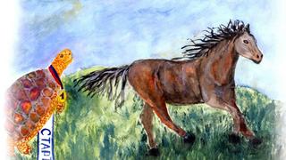 Иллюстрации для книги выполнены юными художниками московской Школы искусств на Пресне. /labirint.ru/