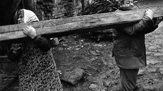«Заготовка дров. Деревня Крива. Чехия». 1993 год