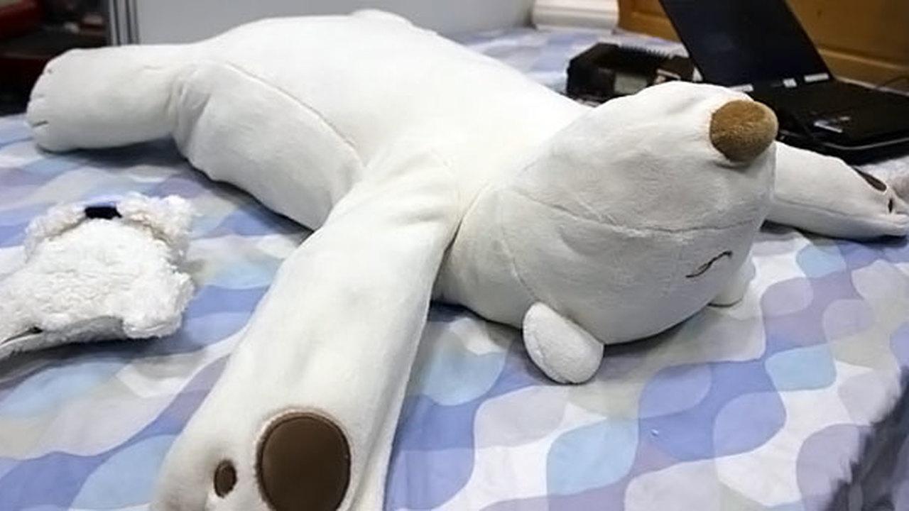 Японцы создали робота-медведя для борьбы с храпом