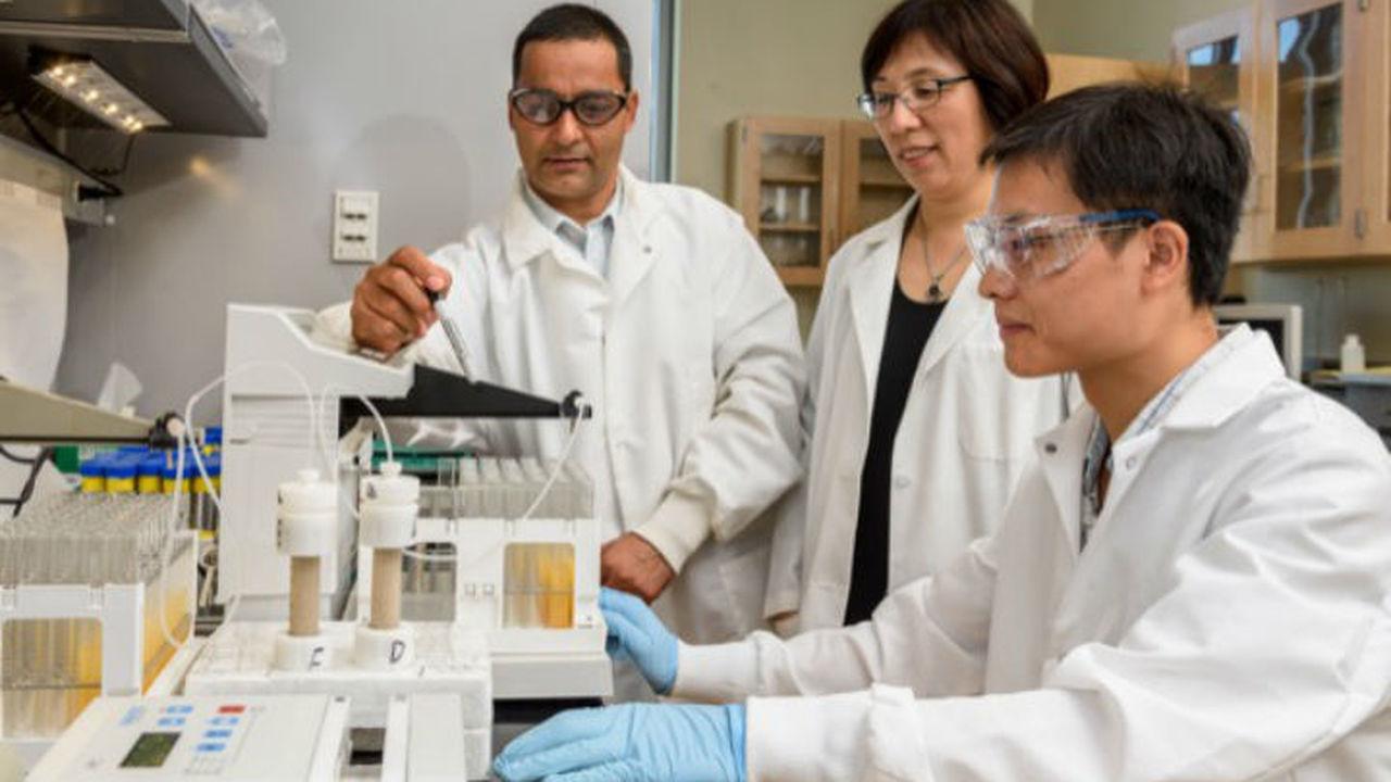 Наноудобрения замедлят вывод фосфора из плодородных почв