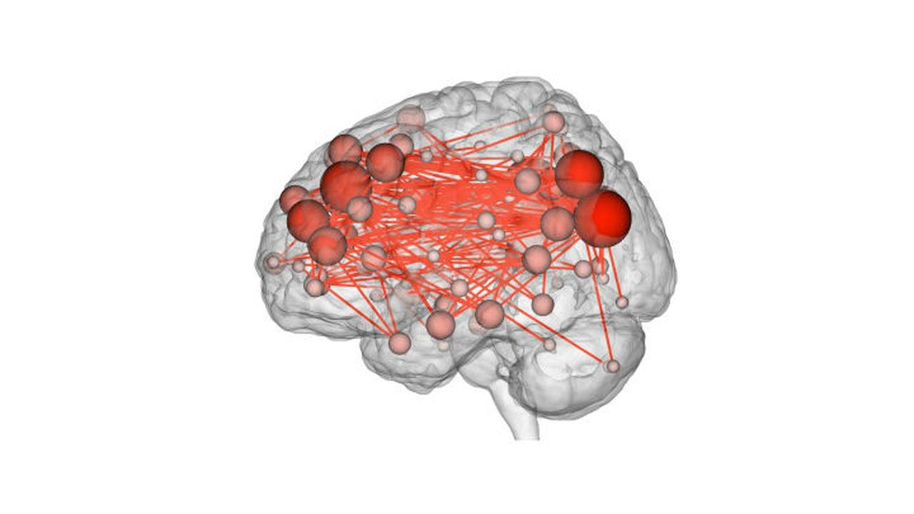 Личность идентифицировали по карте сигналов мозга