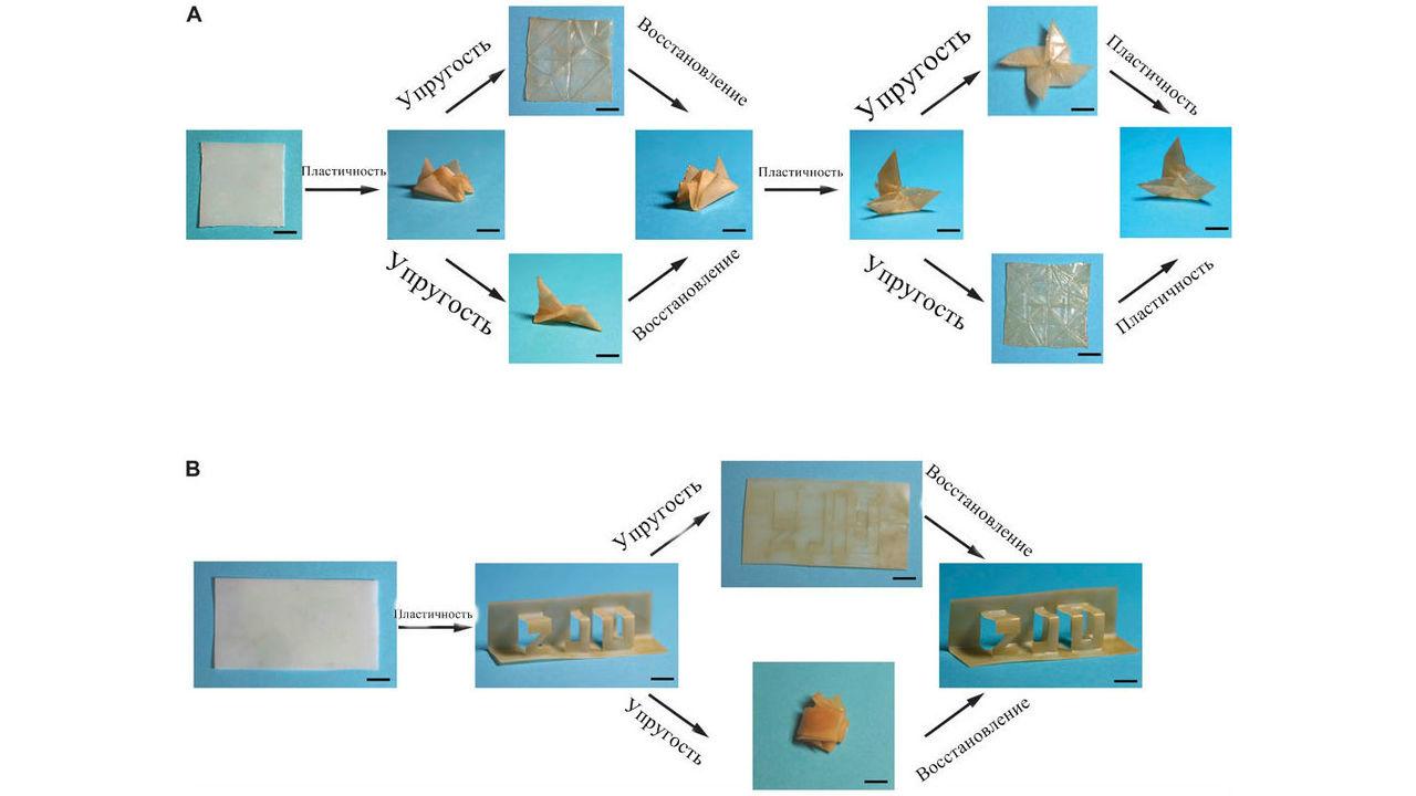 """В Китае создали полимер, способный """"запомнить"""" сотни различных форм"""