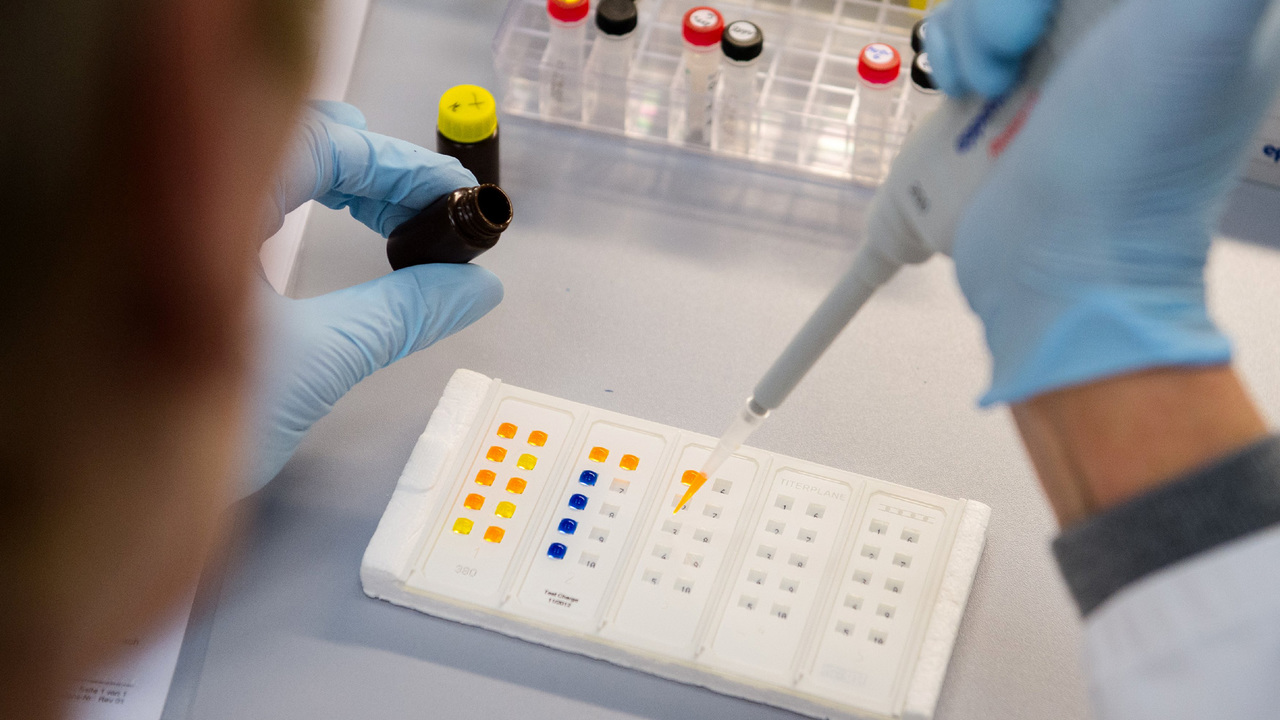 Создана вакцина от вируса Зика