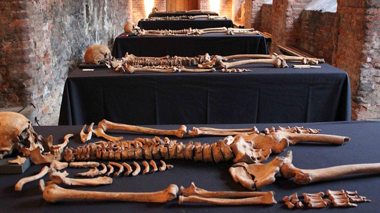Чума и черепки: уникальное археологическое исследование с драматичной концовкой