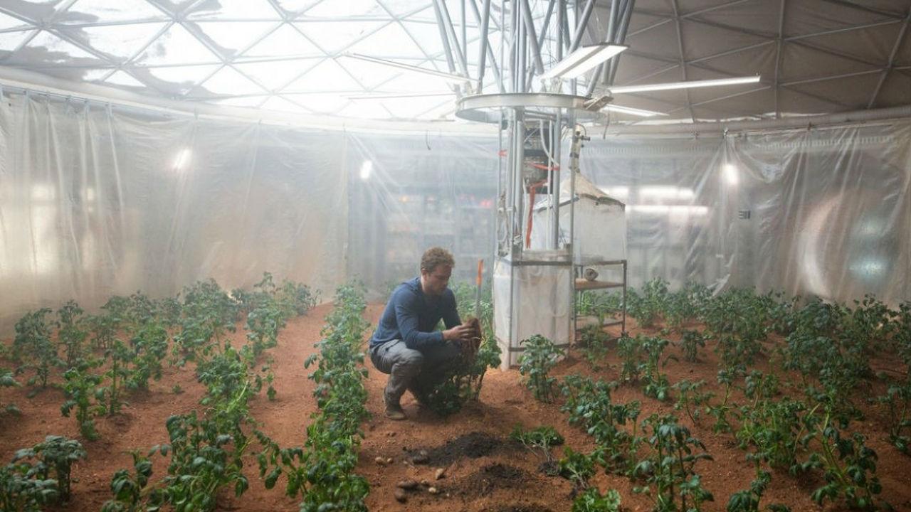 Жизнь на Марсе становится реальностью: выращен первый пригодный для употребления в пищу урожай