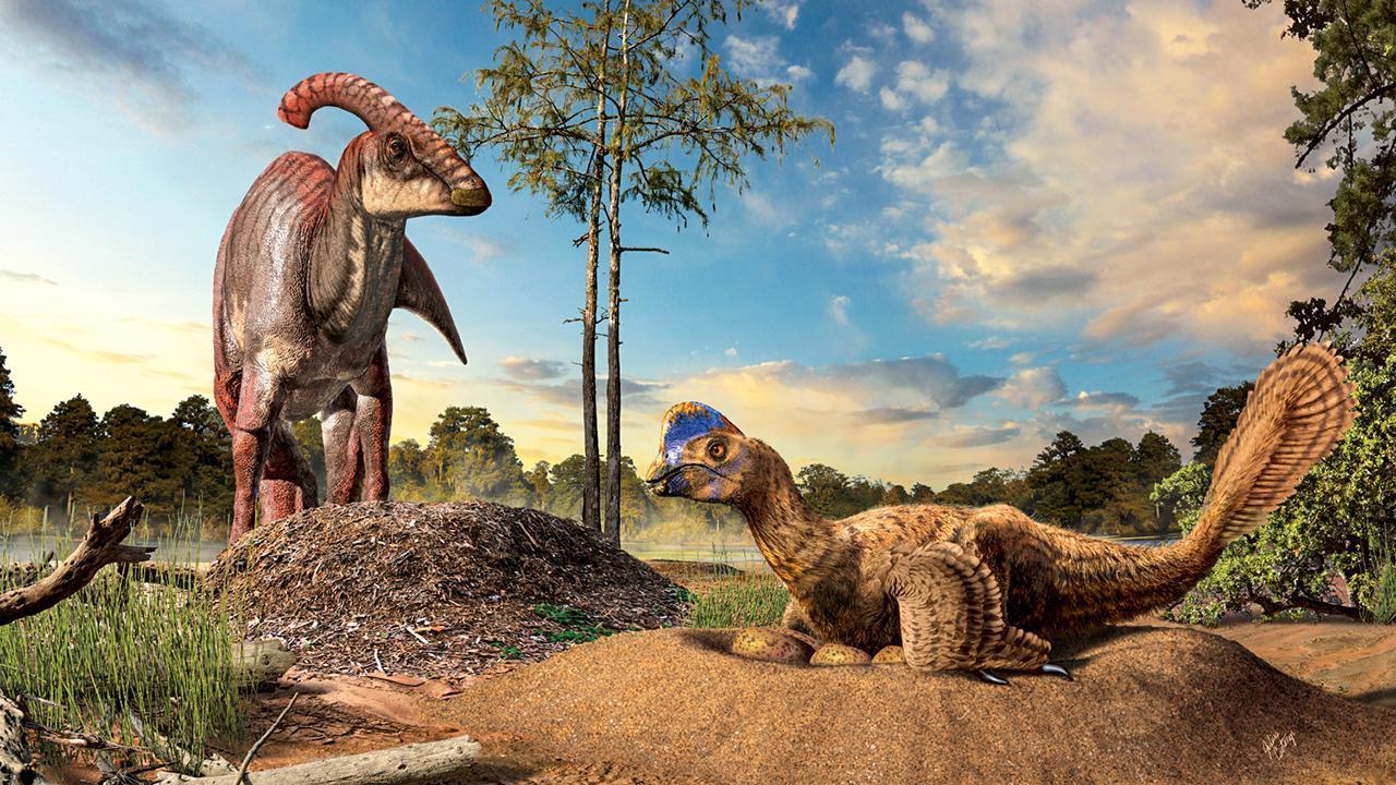 От чешуи до перьев: генетики выяснили, как эволюционировал кожный покров динозавров