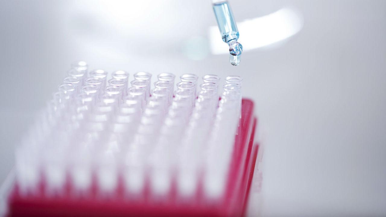 Борьба с лекарственно-устойчивой малярией ослабляет защиту перед микробами