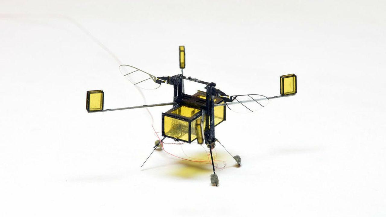 Крошечный робот-пчела, покоривший воздух и воду, перешёл на новую ступень эволюции