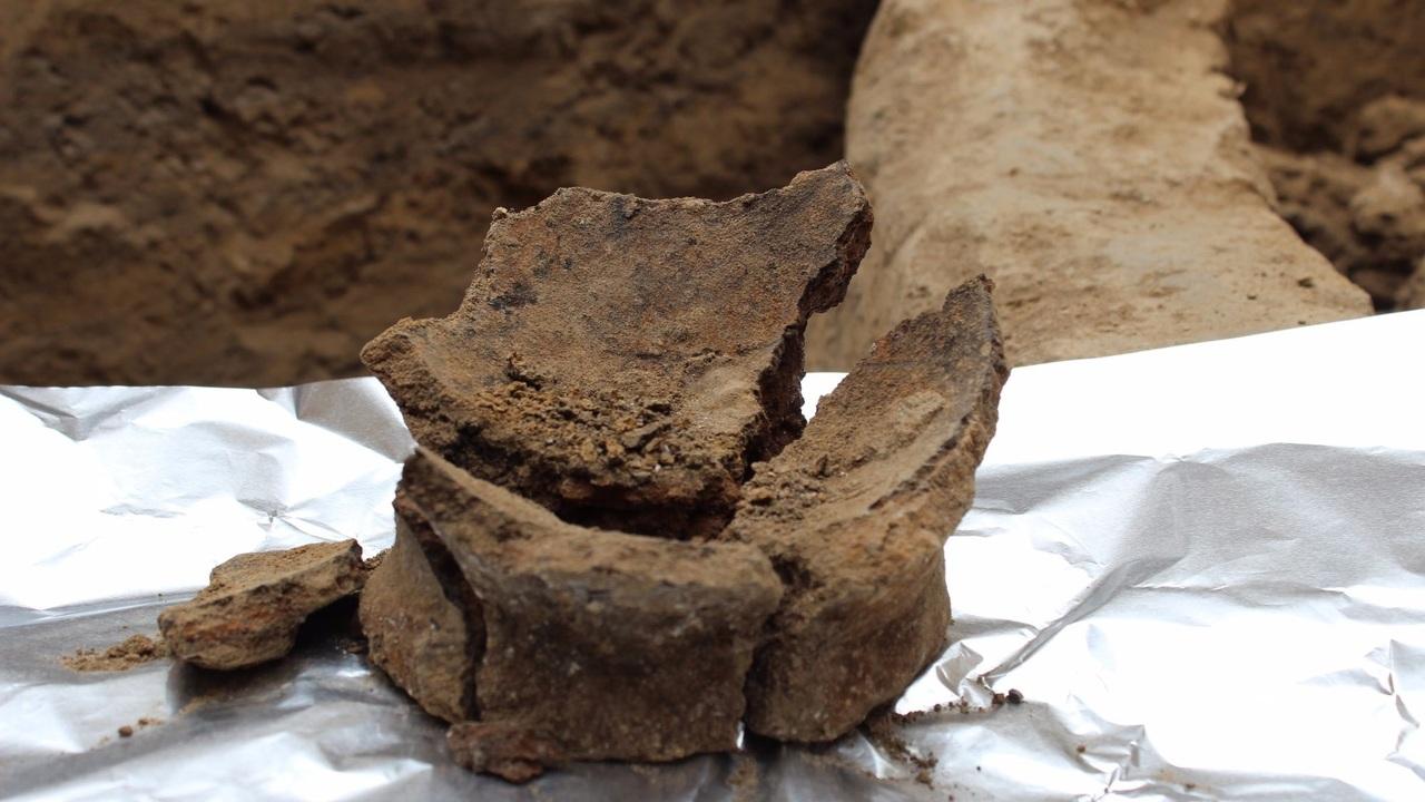 8000-летнее вино: грузинское виноделие может оказаться самым древним в мире