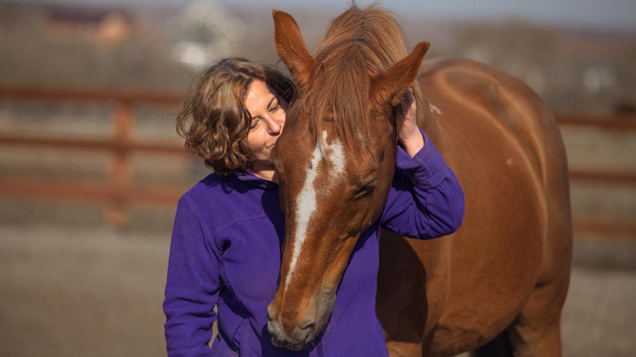 Главное – свобода: ученые нашли доказательства эмоциональной связи человека и лошади